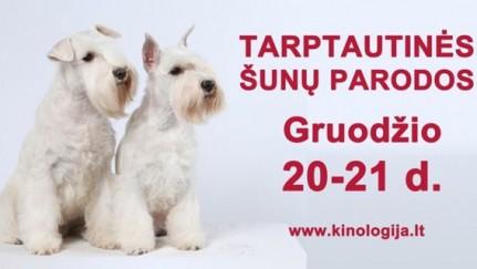 Nuotraukos šaltinis: www. kinologija.lt